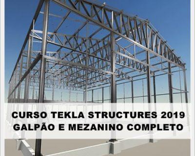 Curso Tekla Structures 2019 Galpão e Mezanino (Modelagem e Detalhamento)
