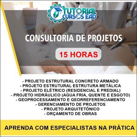 Consultoria Personalizada ao Vivo (15 horas)