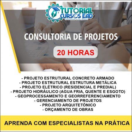 Consultoria Personalizada ao Vivo (20 horas)