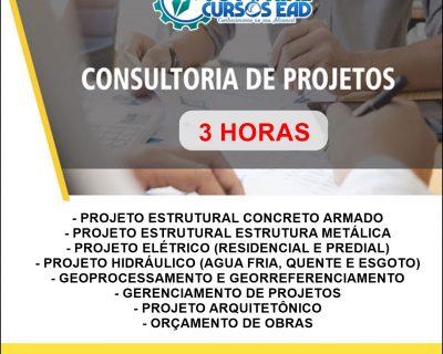 Consultoria Personalizada ao Vivo (3 horas)