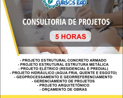 Consultoria Personalizada ao Vivo (5 horas)
